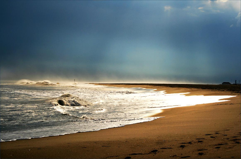 Beach Dreamscape