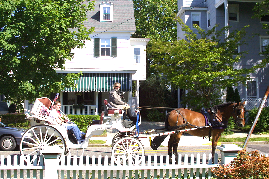 Horse and Carriage Tours on Hughes Street