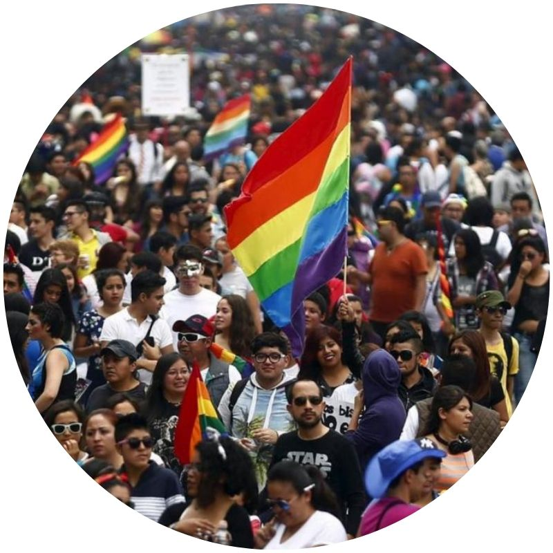 Image description: Large crowd of people at a Gay Pride parade in Mexico City, 2018. Several rainbow flags wave above the crowd (Credit: Reuters/Edgard Garrido)