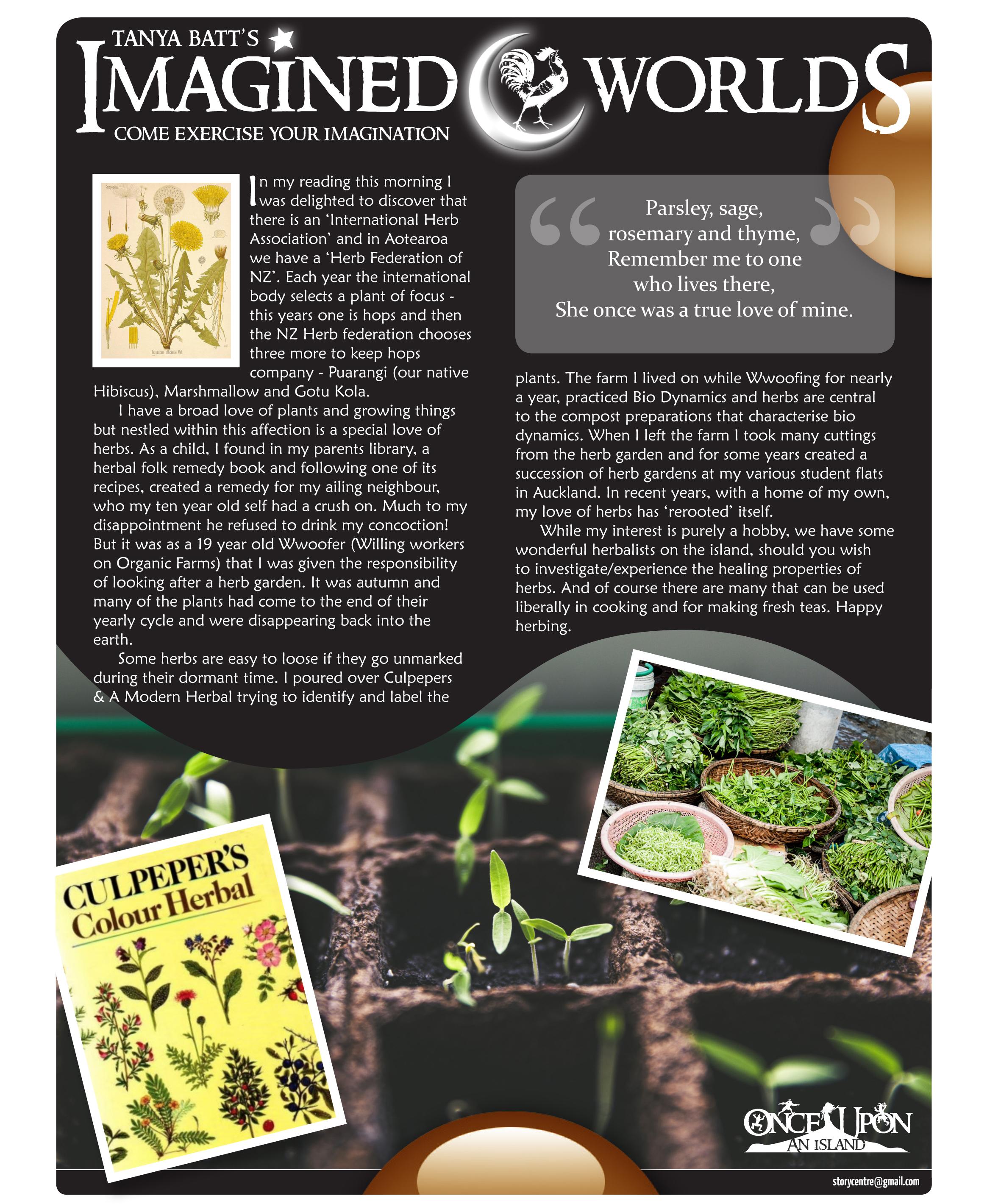 Week 624 - Herbs.jpg