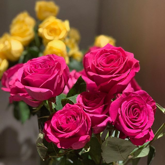 Happy Friday! 🌹 Bright and colorful roses look absolutely stunning against our grey cement walls.