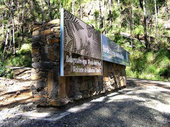 Border-Ranges-National-Park-1.jpg