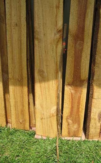 lumber cropped.jpg