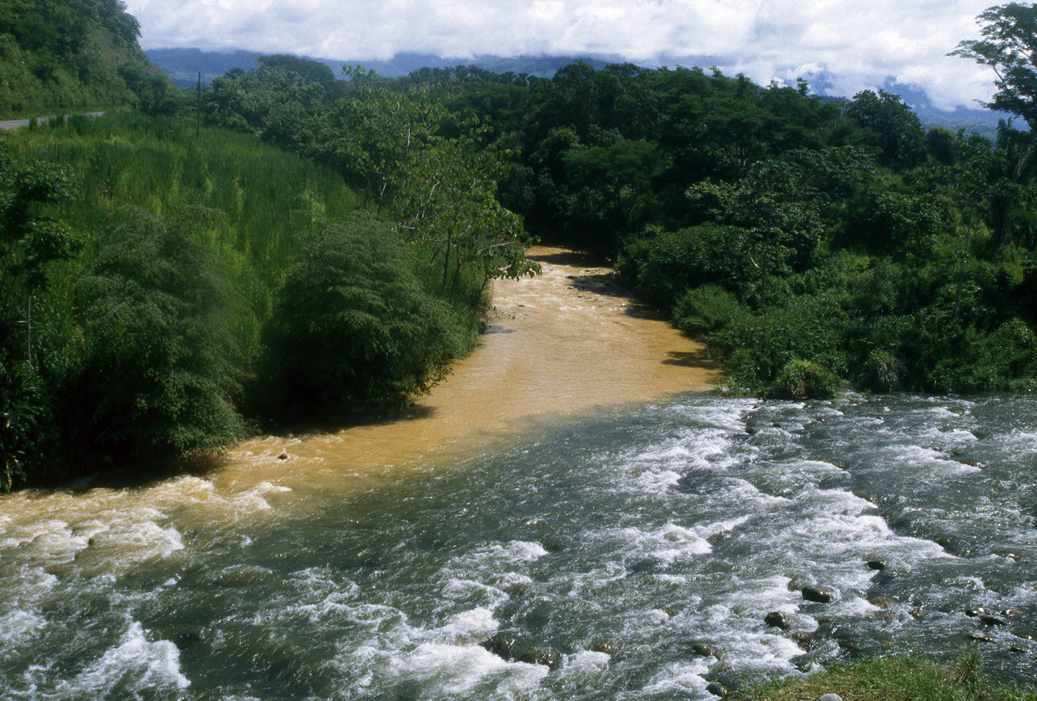 A river draining a deforested area joins a river (foreground) draining a more pristine region.