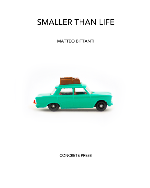 Matteo Bittanti,  SMALLER THAN LIFE , 2013