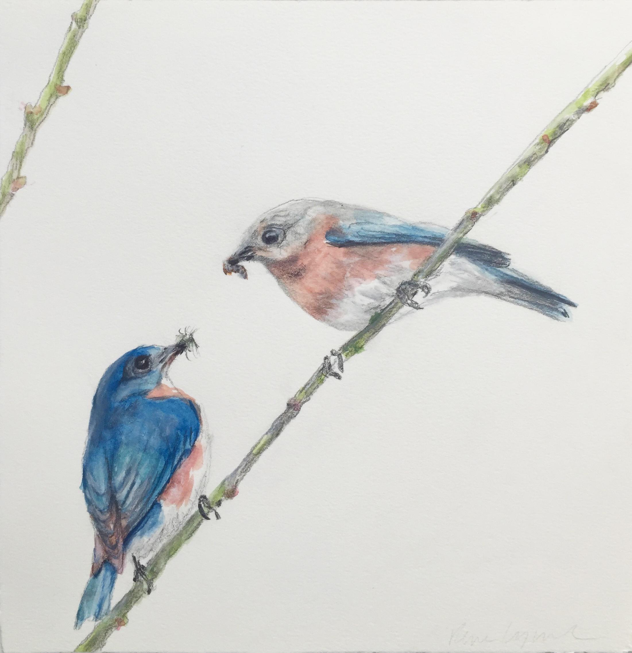 #35 Rene Lynch  Blue Birds  Watercolor on paper 10 x 10 in. 2018