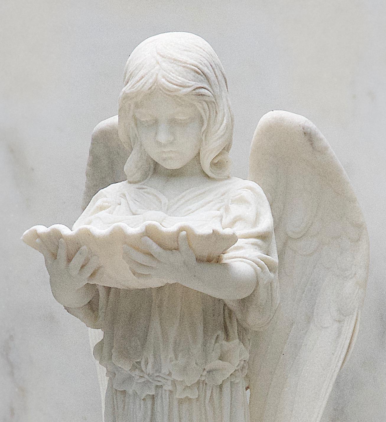 Angel looking into shell.jpg