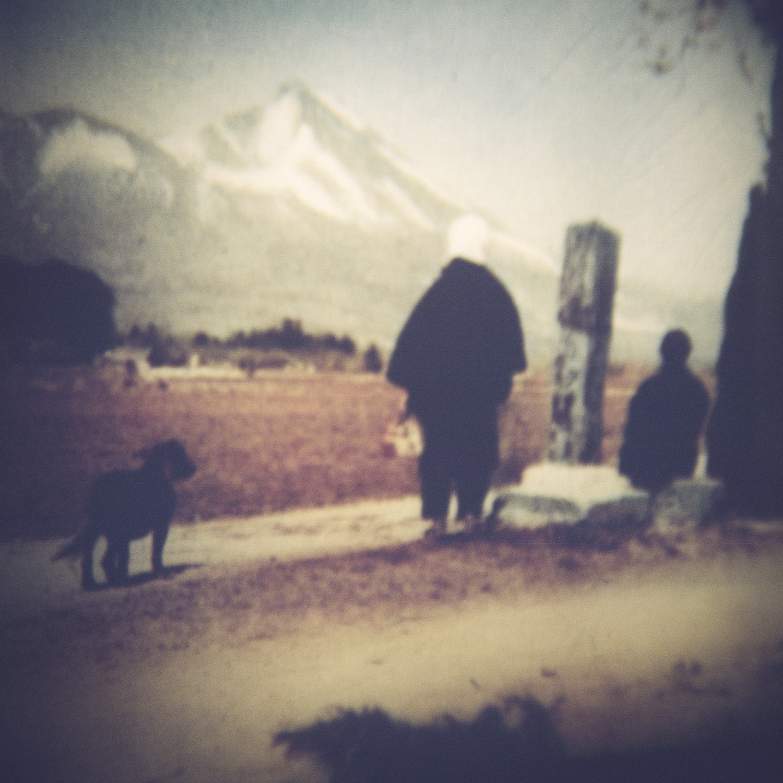 Mount Fuji & Dog