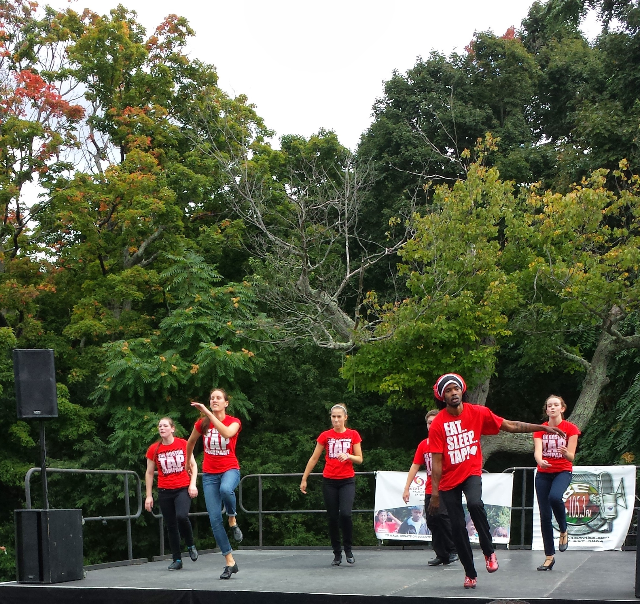 Sickle Cellebration at Franklin Park with the Greater Boston Sickle Cell Association