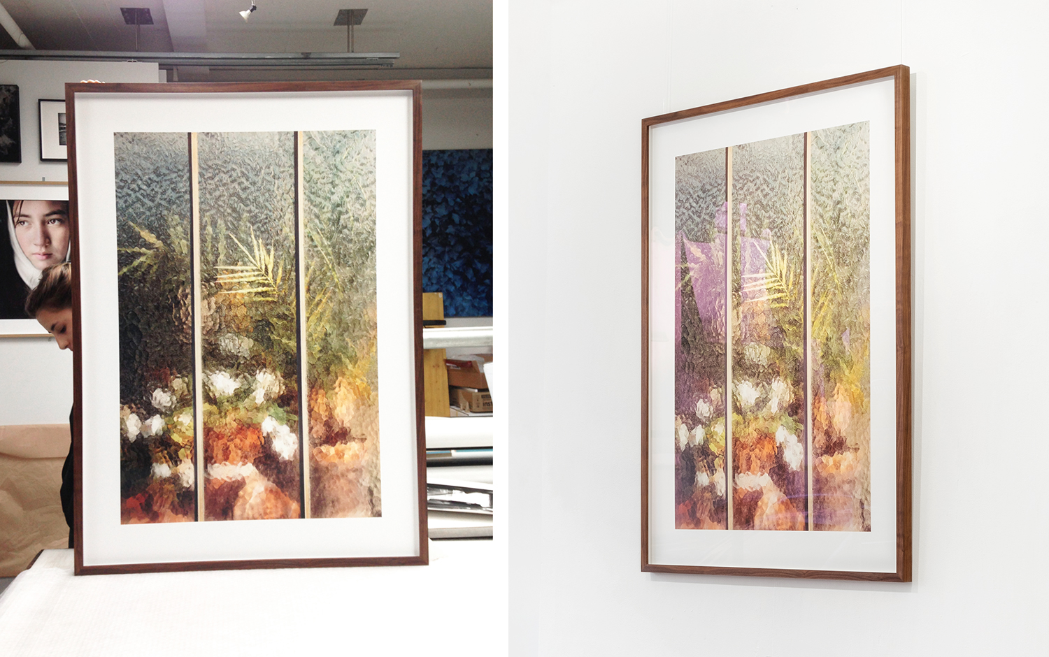 Arecaceae Palmae in 80x111cm - Solid oiled walnut frame, 1cm white spacer, museum grade glass (anti UV anti-reflective)