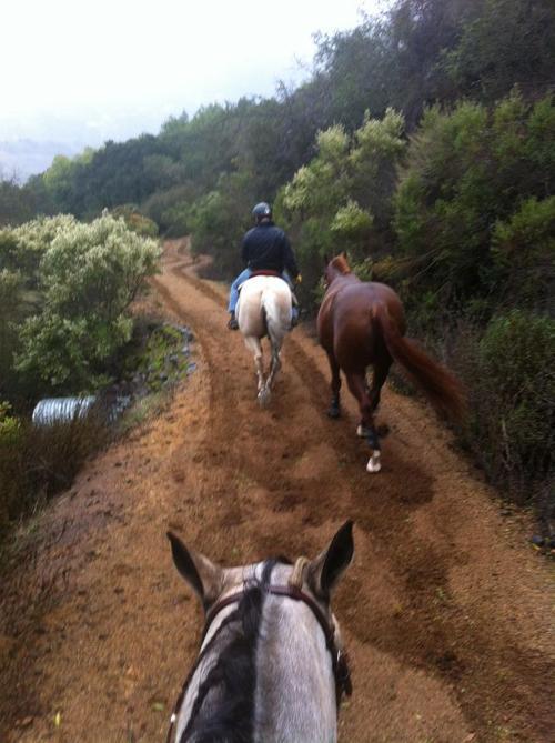 View on Saratoga Farm trails