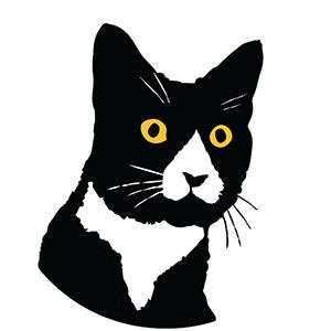 mobius theory daft cat logo web.jpg