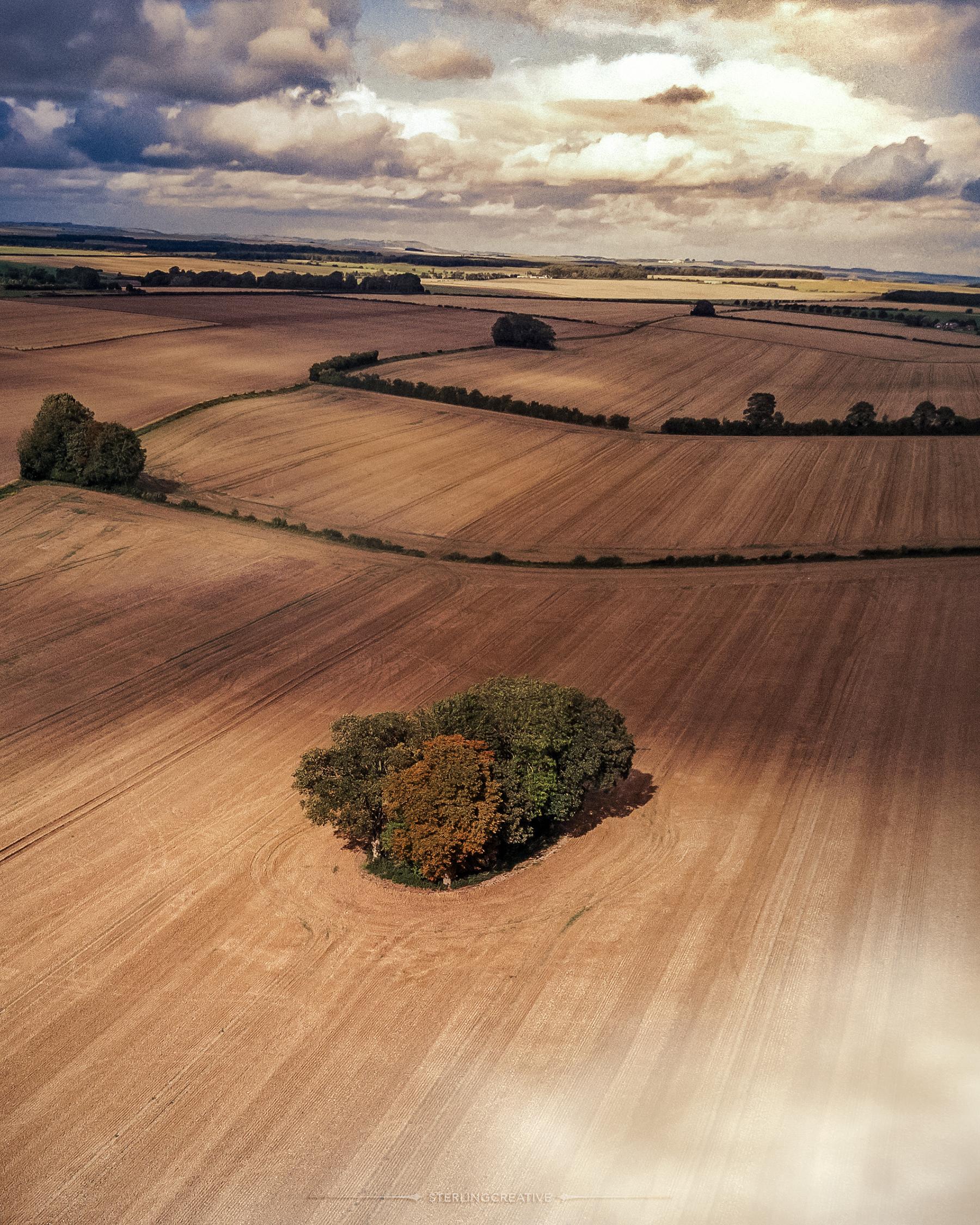 Englandfields.jpg