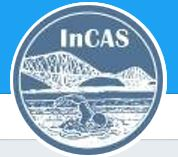 InCAS.JPG