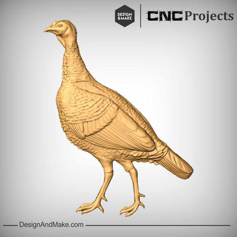 Wild Turkey Hen No.1.jpg