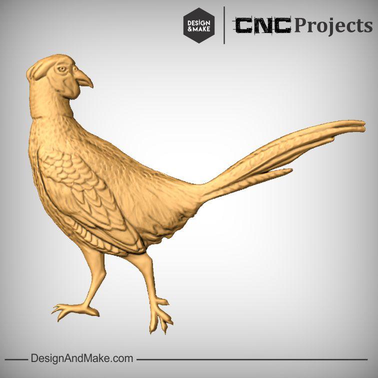 Pheasant No.2.jpg