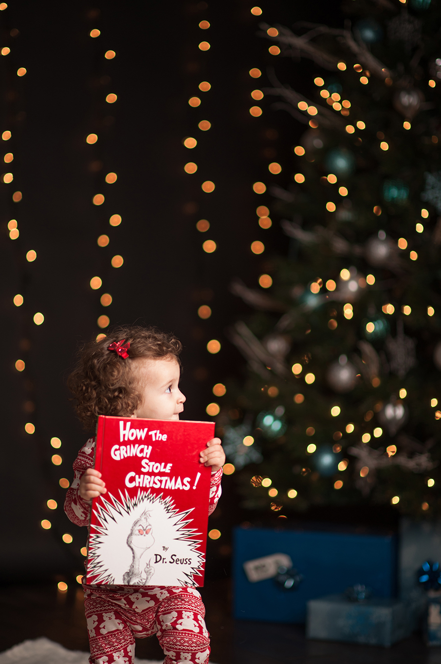 Tavares_HolidaySession2015-20.jpg