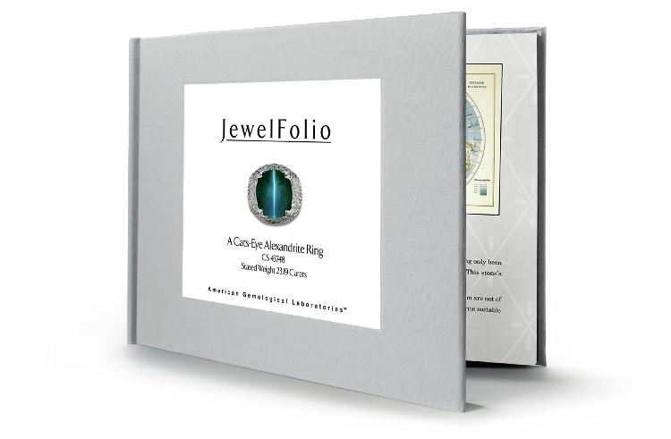 Jewelfolio Lead Shot.jpg