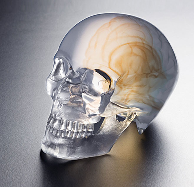 A 3D printed skull made on one of UnionTech's resin-based 3D printers