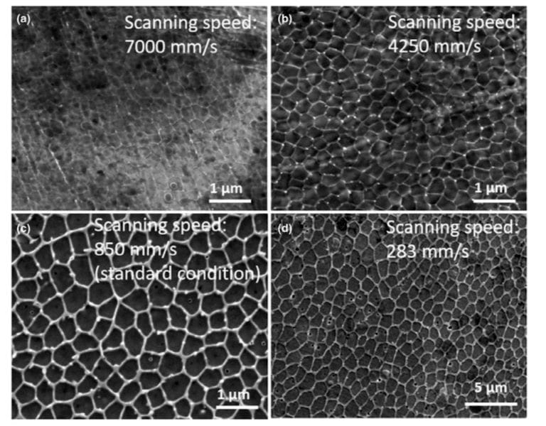 Examples of microscopic 3D printed metal dislocation networks