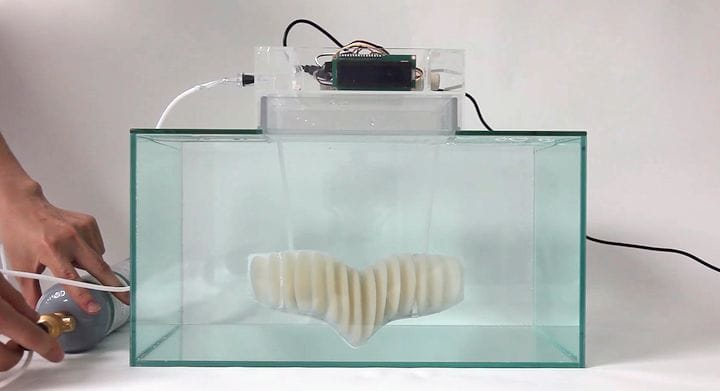 Testing the oxygen generated by AMPHIBIO [Source: Jun Kamei]