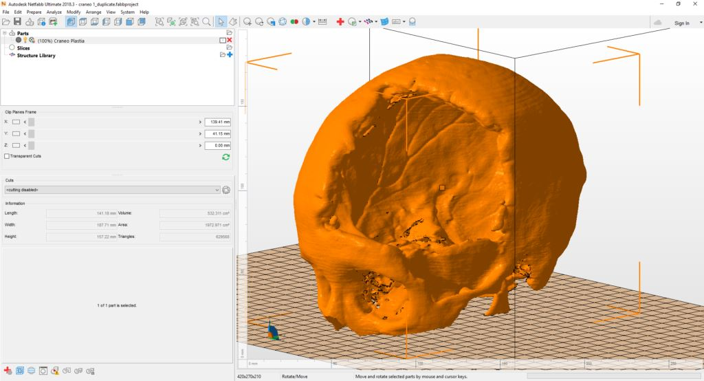 A digital model of Adriana's skull in Autodesk Netfabb [Image: Autodesk]