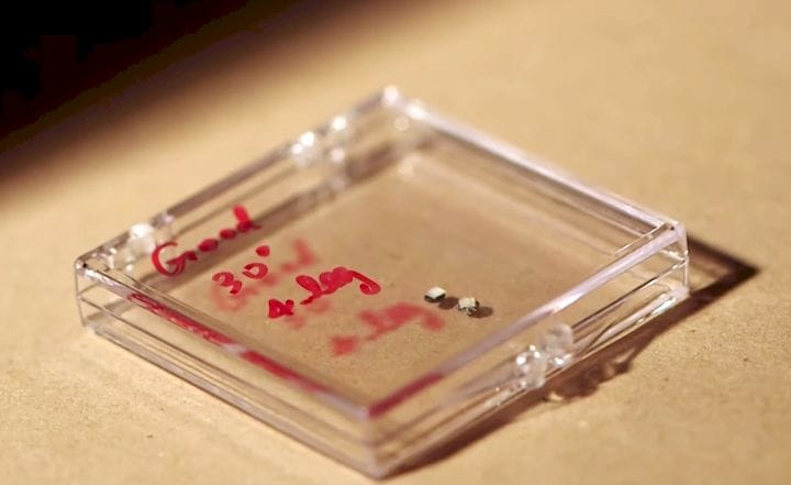 The 3D printed microbots swimming in solution [Source: Georgia Tech]