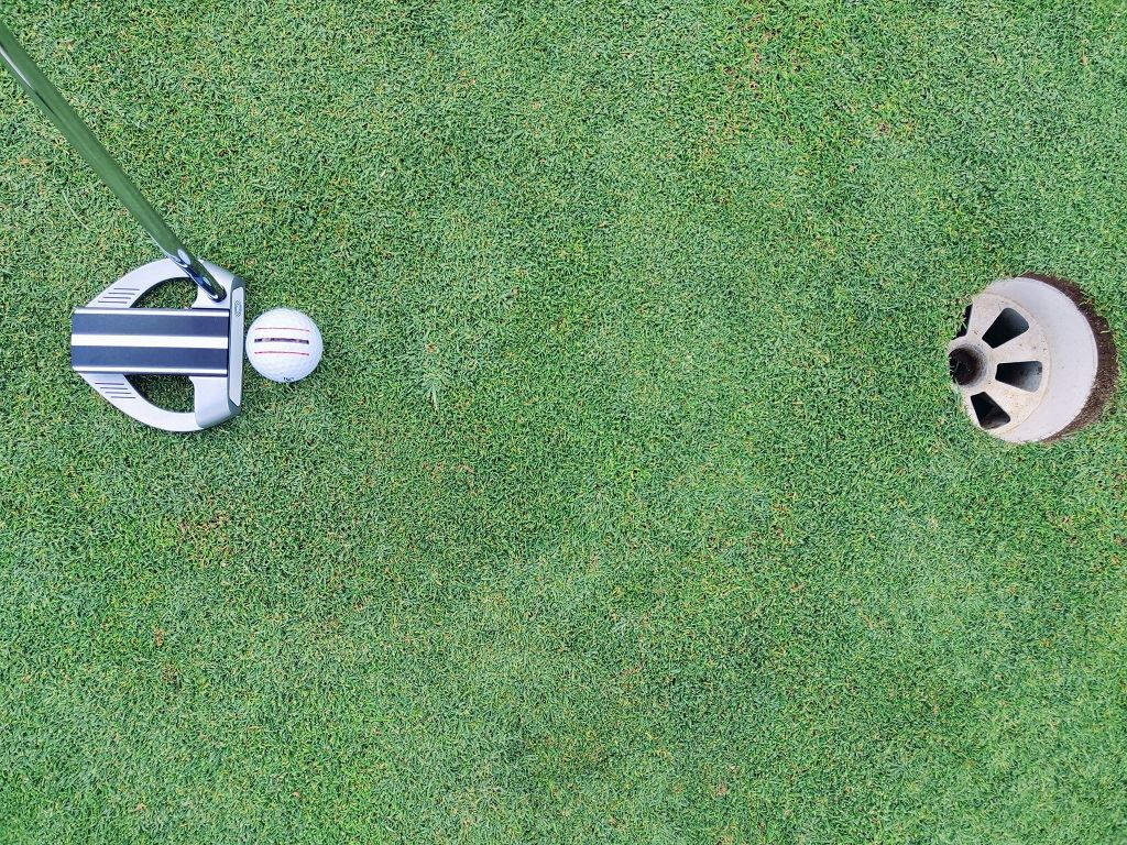 Putting with a Mohawk-marked golf ball [Image: CDJ Designs]