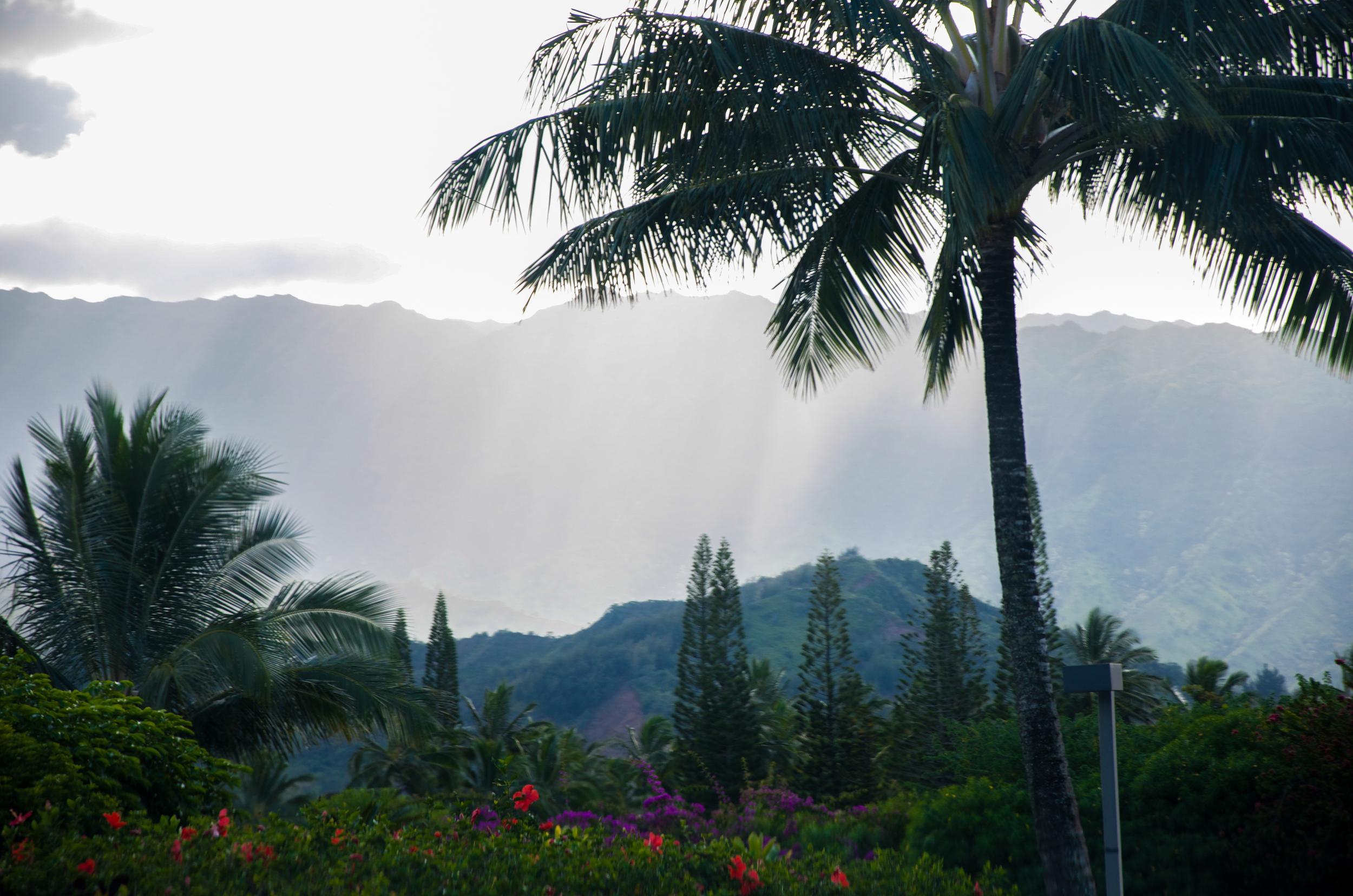 Hawaii       Volcano     Weaver