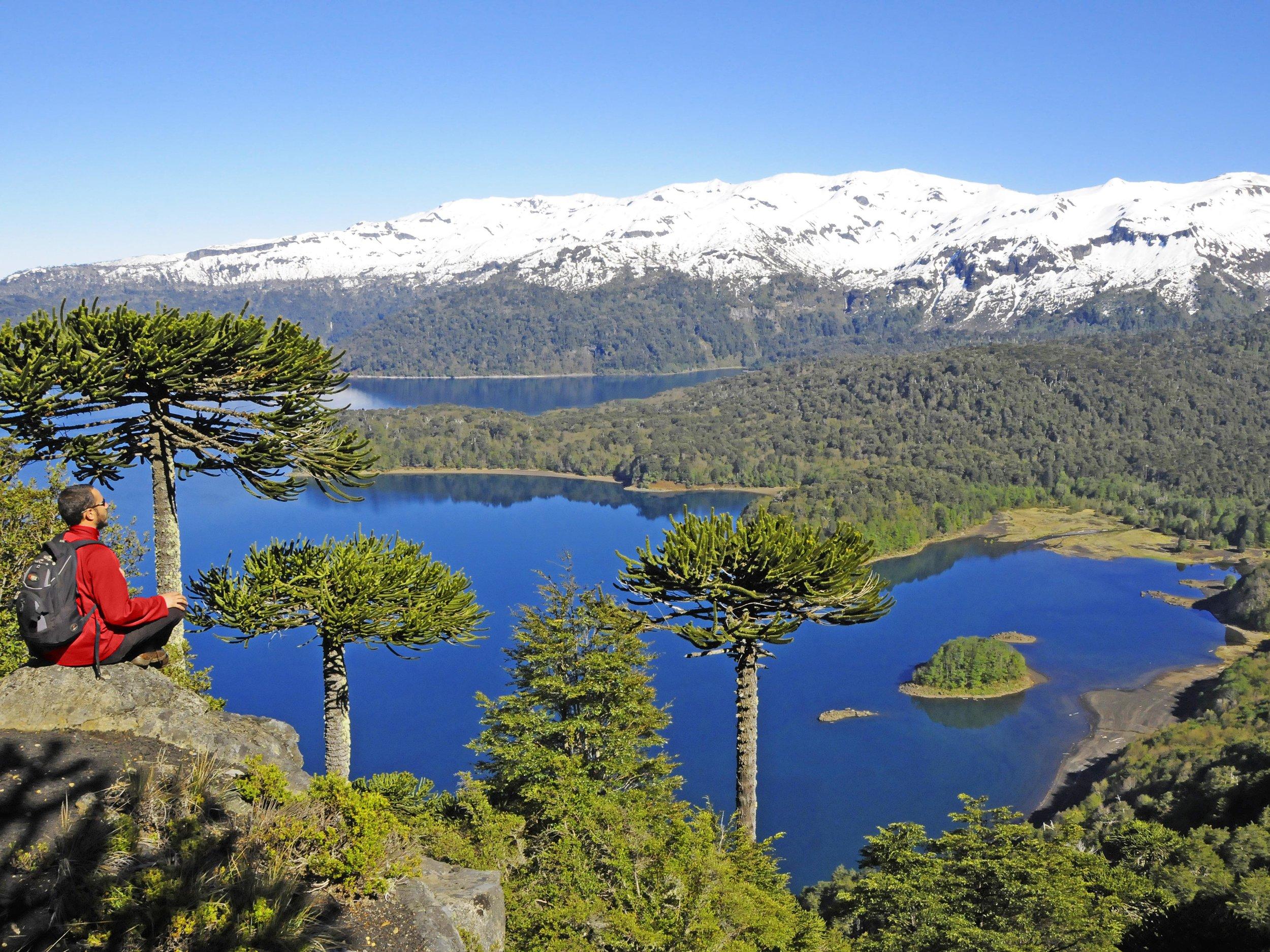 Chile Parque Nacional Conguillio.jpg