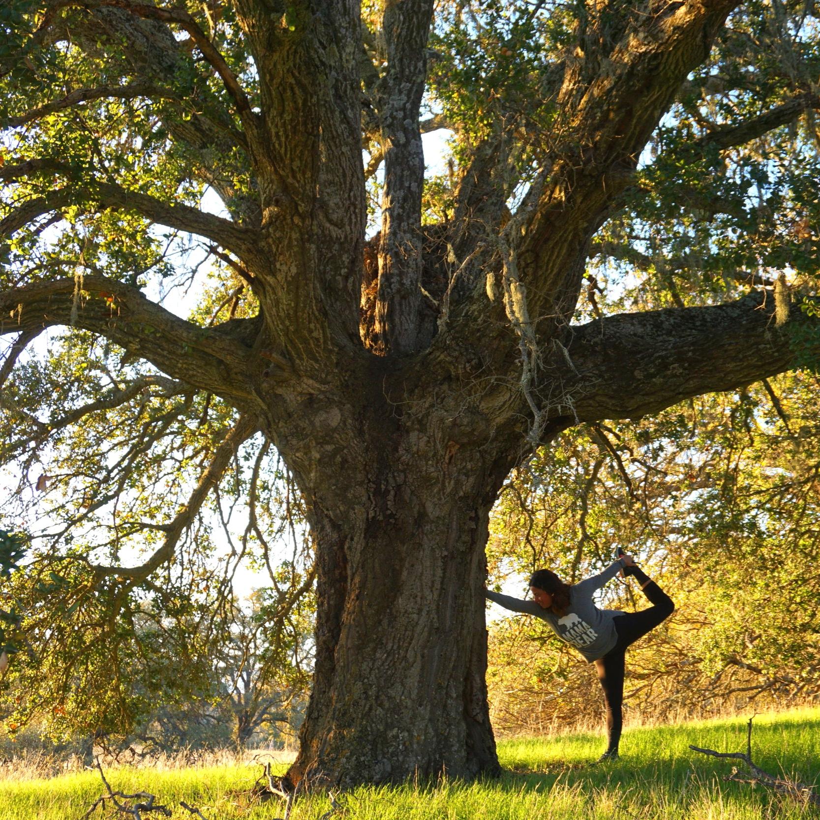 Sagrada Wellness Yoga Retreats