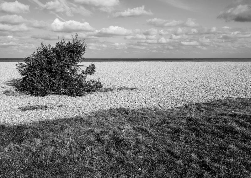 Deal beach 5