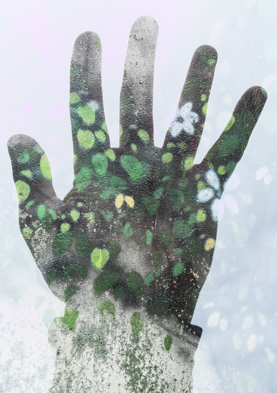 Hand in bloom