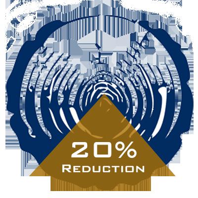 20 percent.png