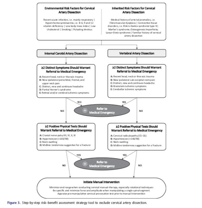risk-assessment-cervical-artery-dissection-annals-internal-medicine.jpg