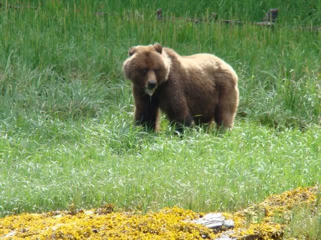 I don't think I can bear much more if I don't wet a line soon.