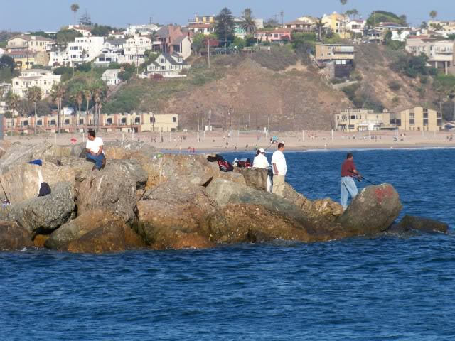 Anglers on the jetty, keep your eye out for that rogue wave. Seriously, I have been on the rocks and that wave is coming. At least it is coming when I am there and it seems to always get me.