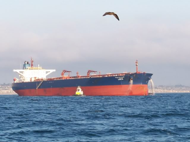 Santa Monica Bay is also the home of crude oil importing. We are close to the oil refineries of the South Bay.