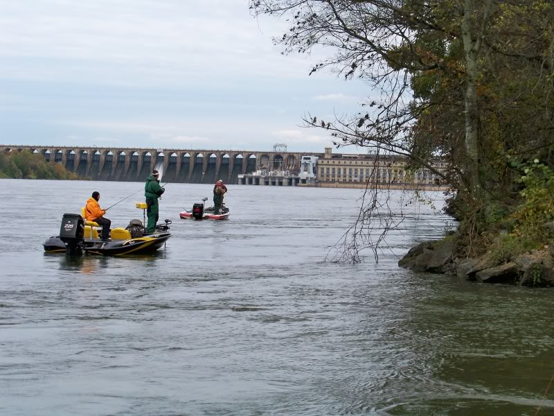 Local team tournament on Pickwick, Wilson Dam beyond. The upstream boat is in front of a bluff wall (bluff out of view). The downstream boat is adjacent a point. Both are in fast current. There is an eddy where the bluff meets the point. In this photo you can see current seams. Find yourself on the bluffs and you are being back seated, target the seams on the outside.