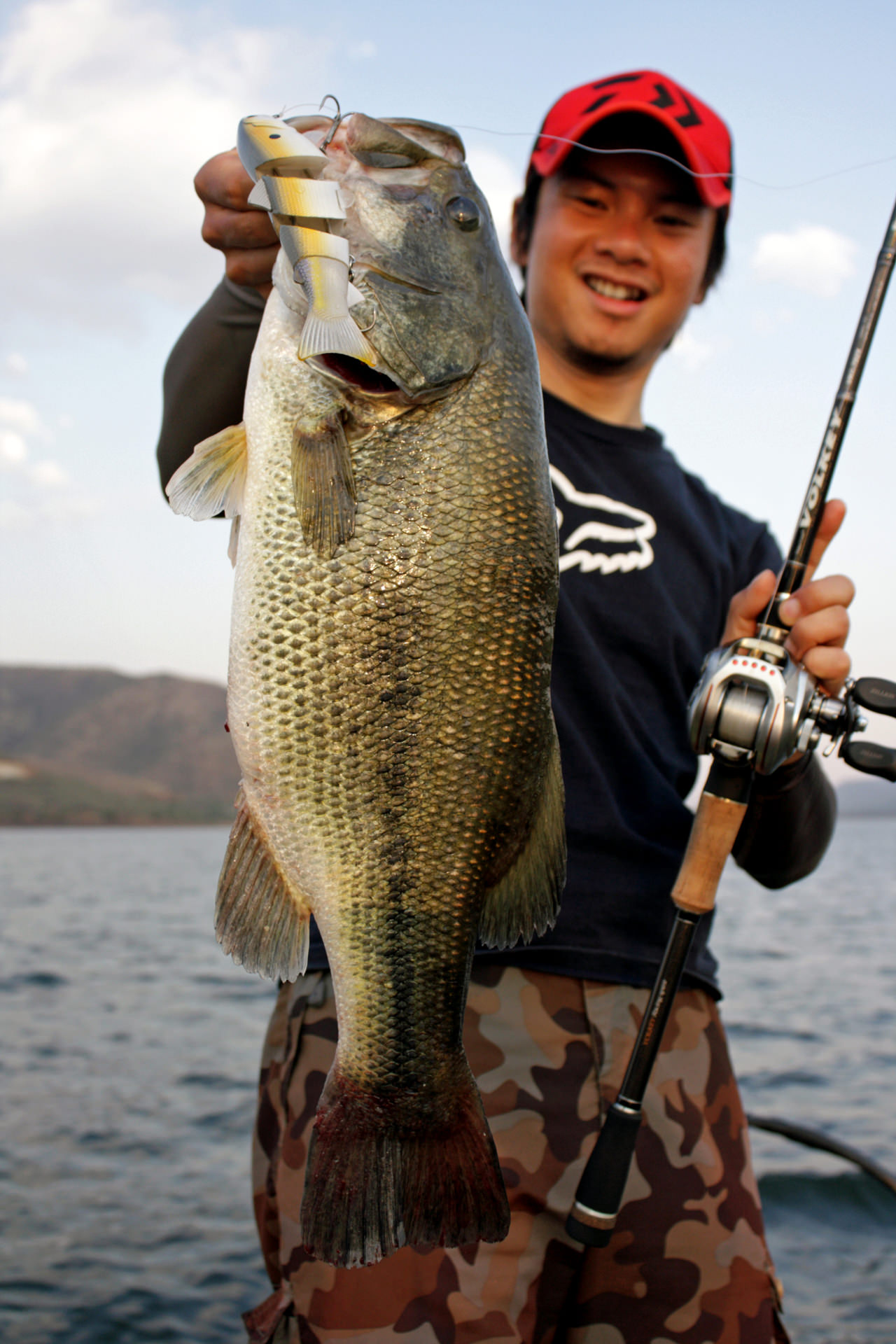 """Working the BBZ1 6"""" (slow sinking) swimbait at the correct depth column can turn on schools of a hump and keep them biting."""