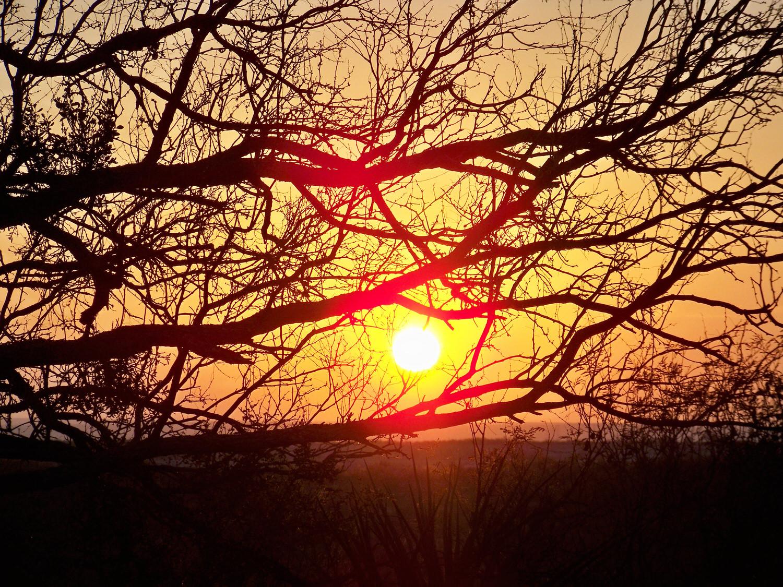 Amistad Sunset