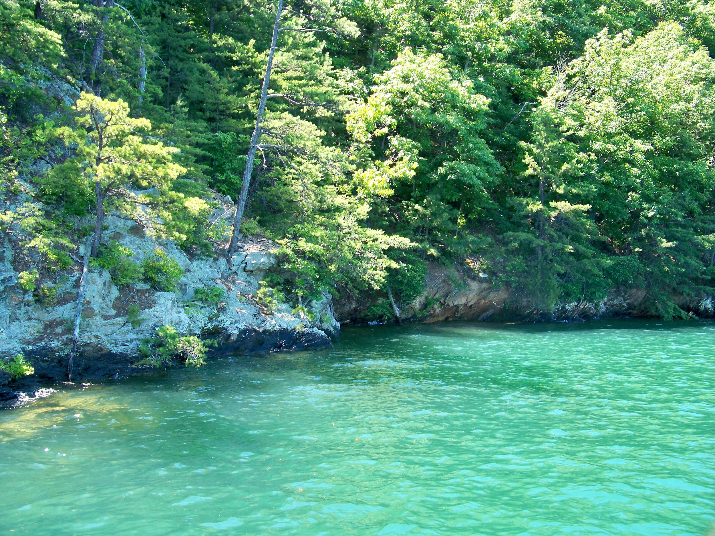 This steep shoreline with submerged boulders, overhanging tree limbs and shadows looks worthy.