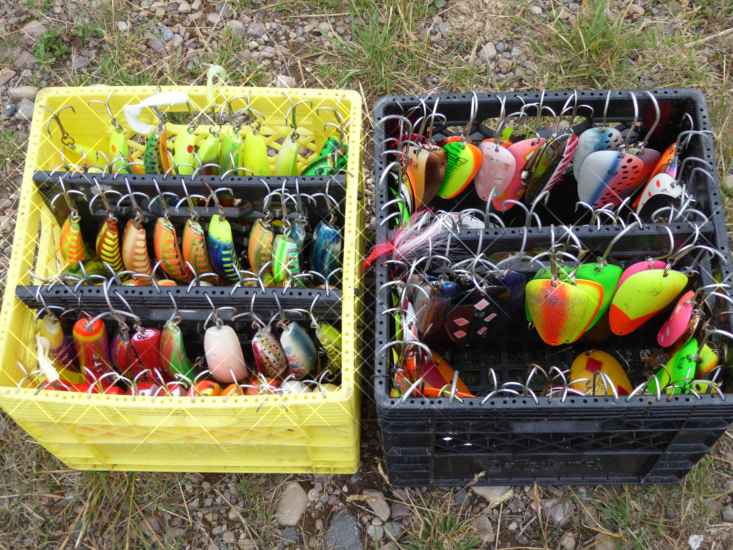Great Bear Lake guide boxes: Flatfish on the left and Husky Delve spoons in the box on the right.