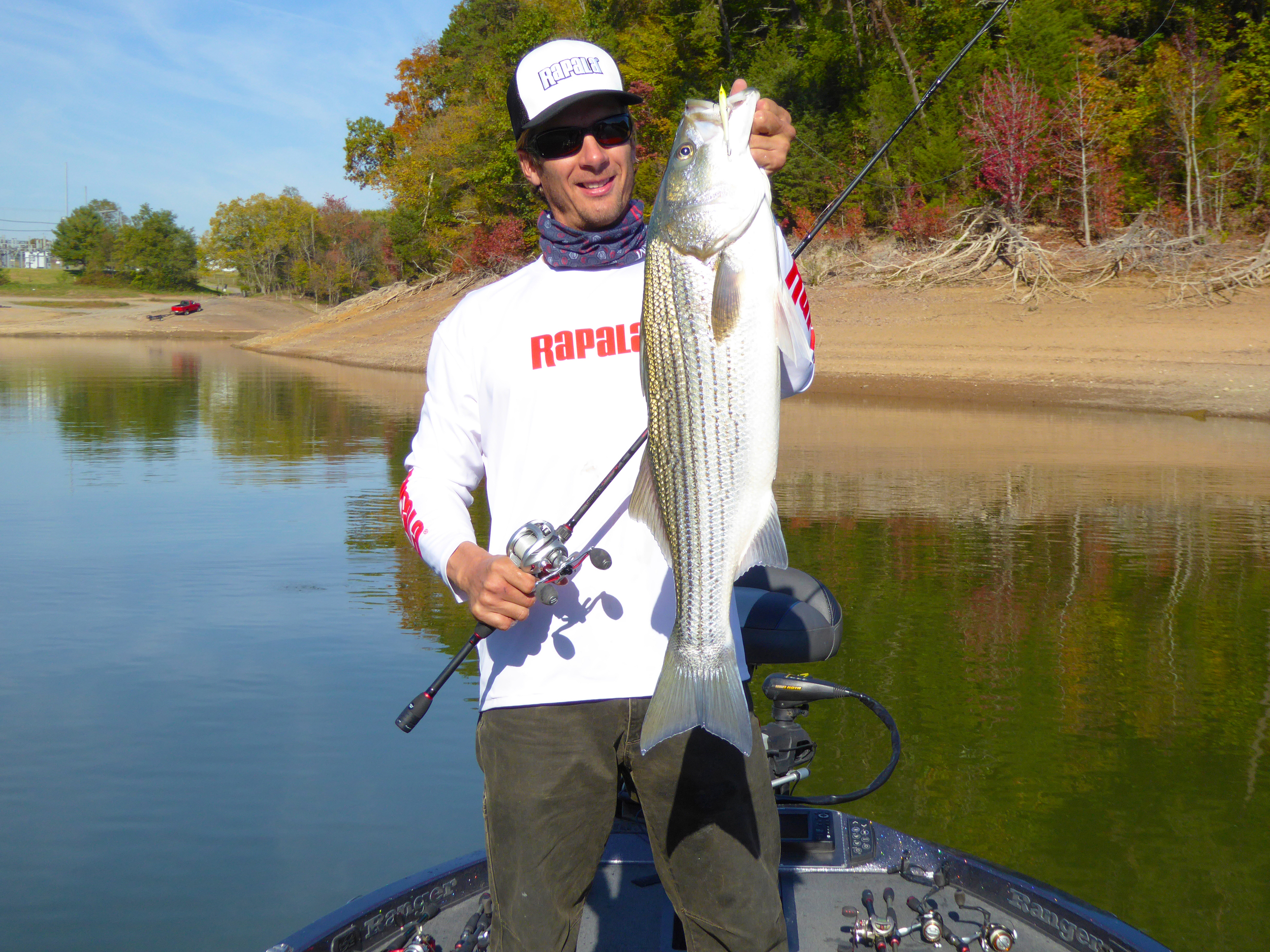 Excellent Cherokee Lake Striped Bass!
