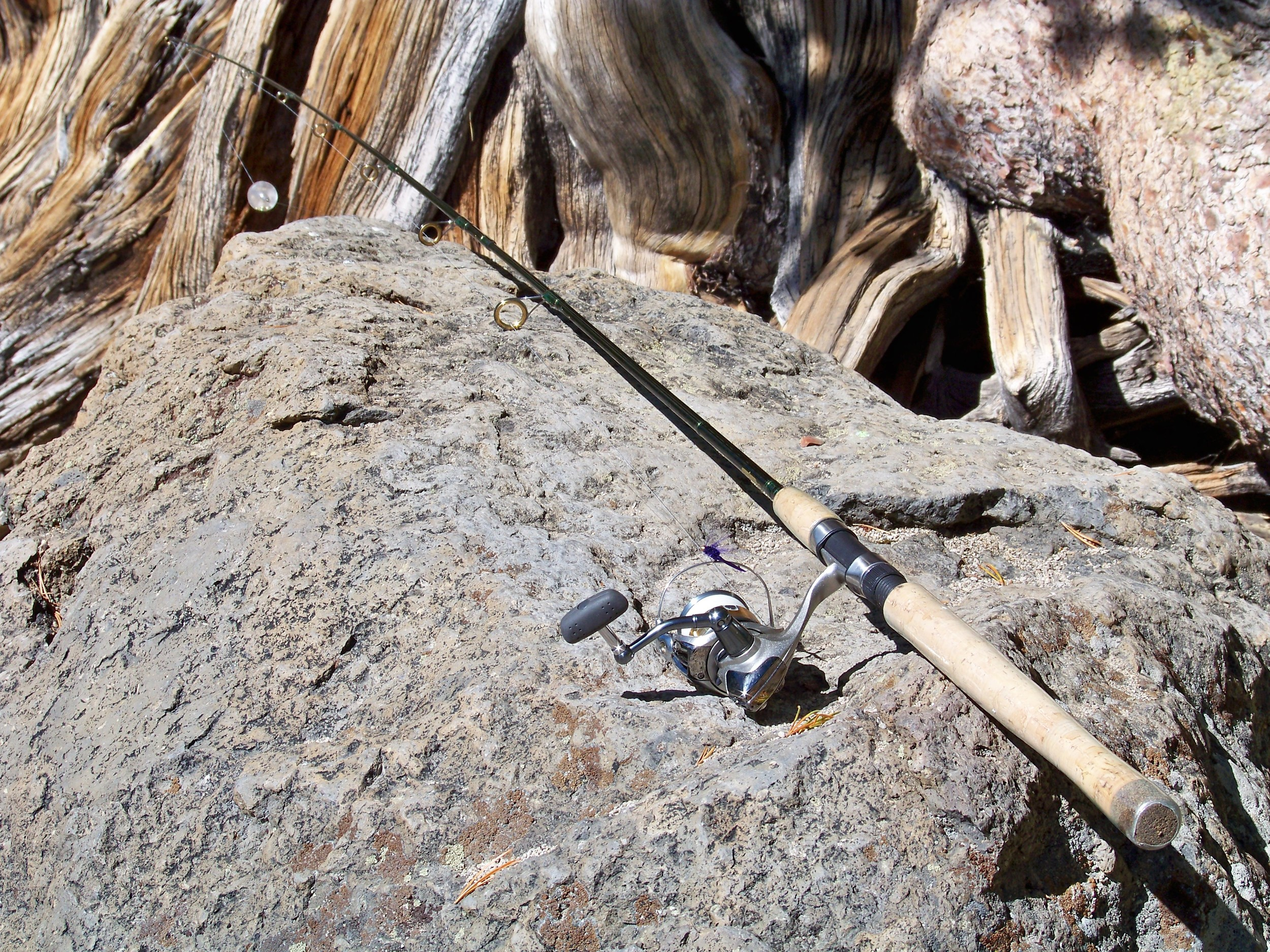 "7'-6"" Lamiglas Rogue River Special, this two piece spinning 'stick' makes an easy travel rod."