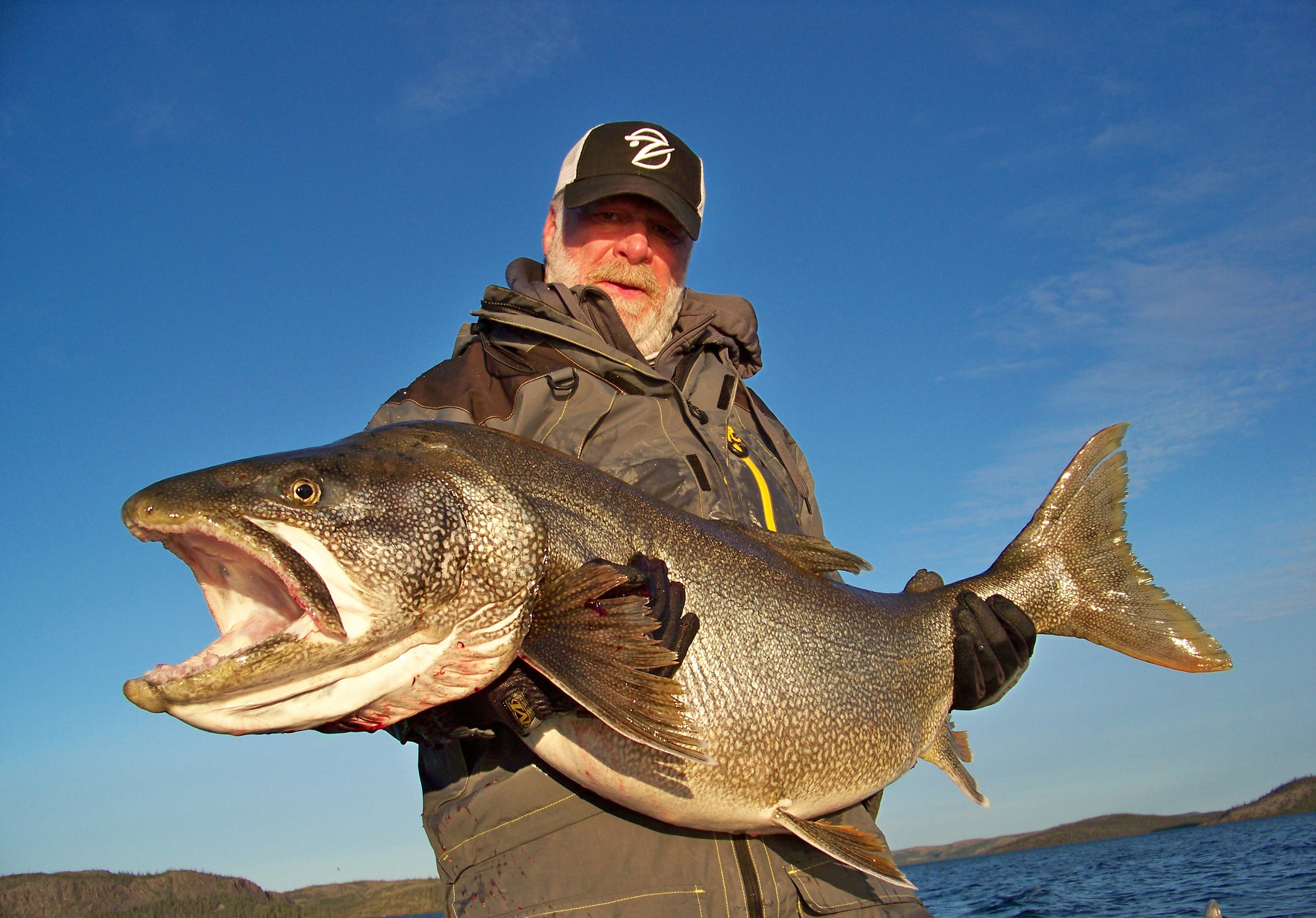 BBZ Writer at Large Derrek Stewart used the figure eight maneuver to trigger this giant following Lake Trout!