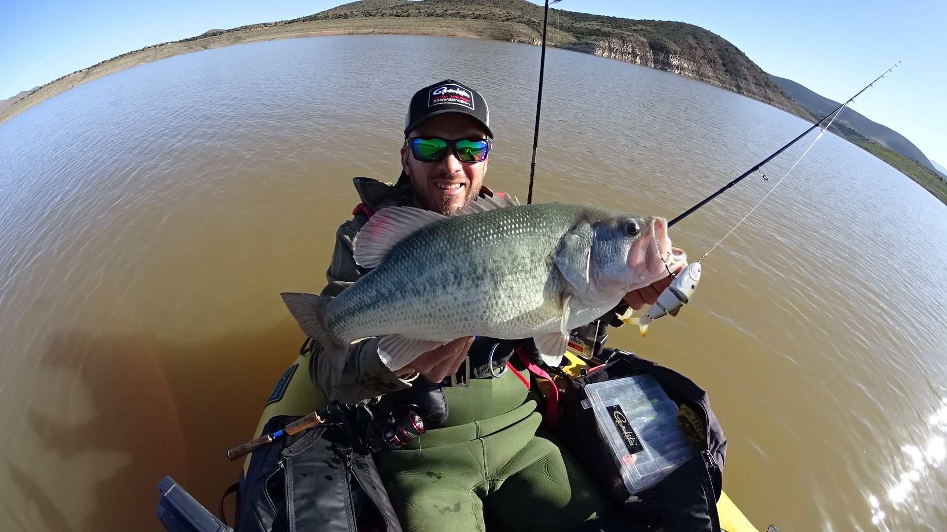 """A 4"""" BBZ Shad fast sink sexy lavender pattern seduced another 5-pounder close to the bank in less than 1m water, which measured just over 20 in."""