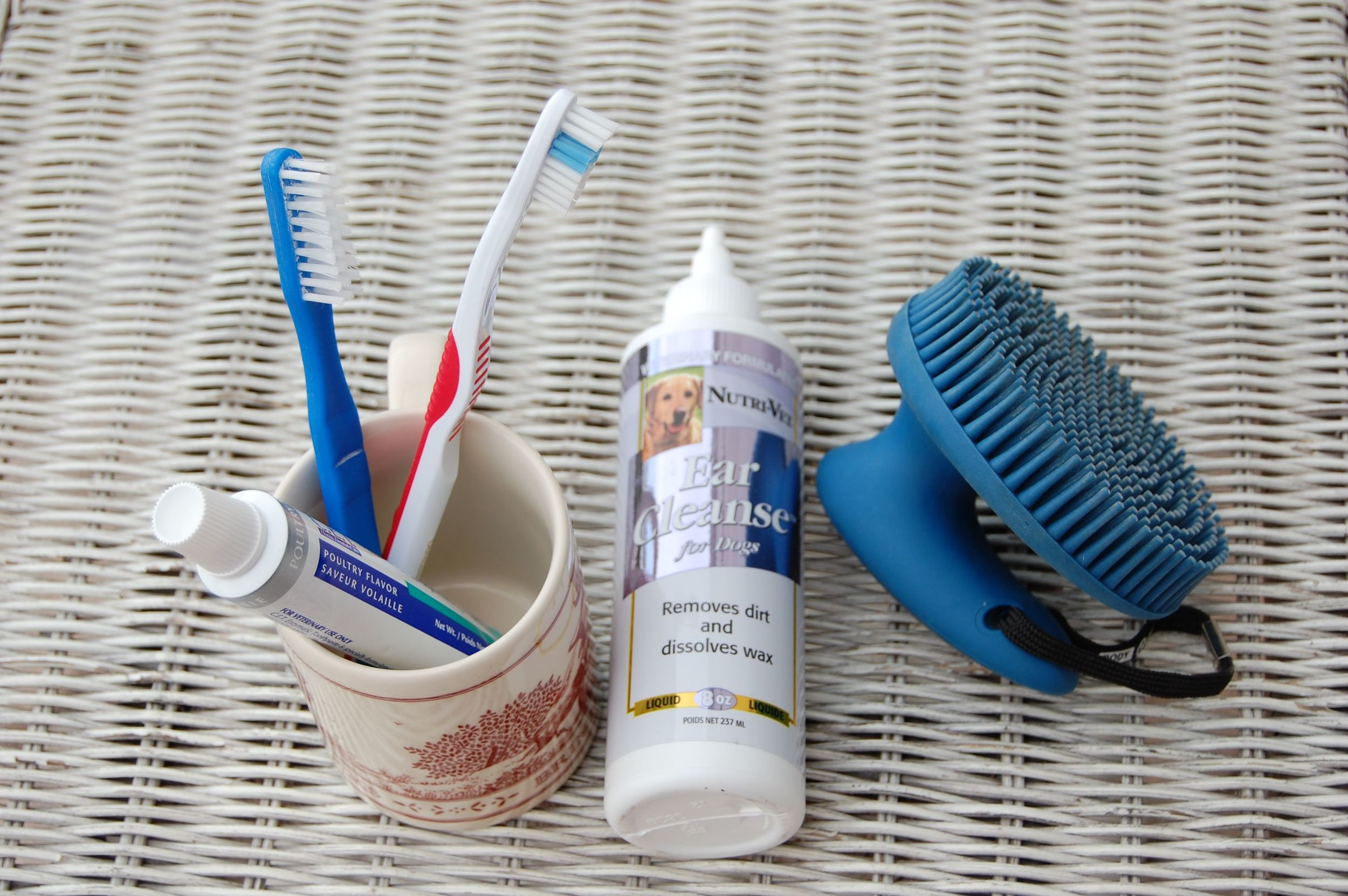 Dental equipment, ear cleanser, and a curry comb for hair. The last for my shorthaired breed is optional; the second is important at times; the first is essential  ALL the time .