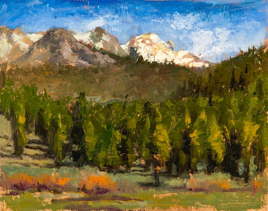 Yosemite#4