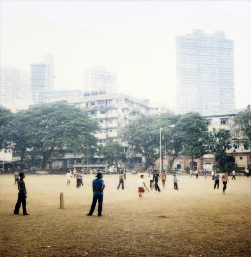 cricket_MG_0076nf.jpg